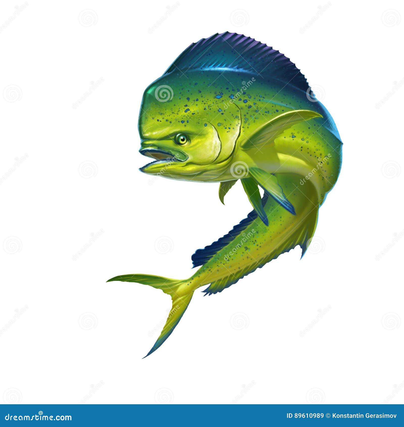 Рыбы Mahi Mahi