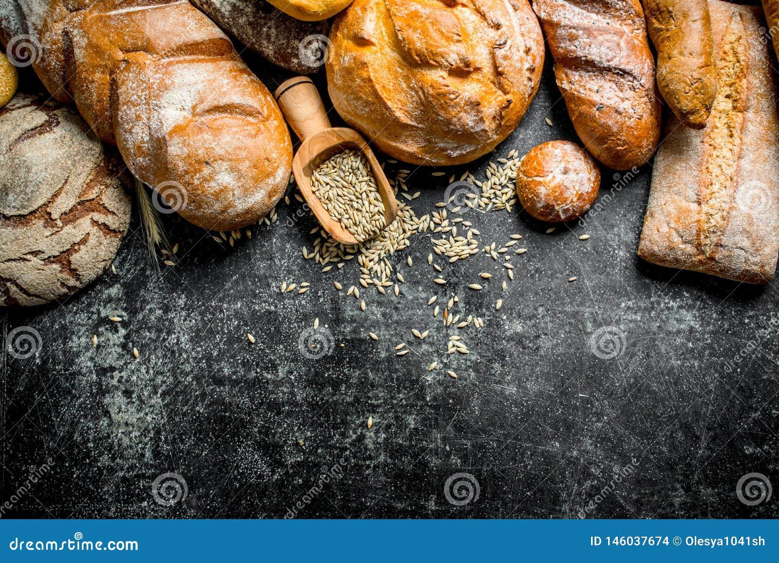Ряд типов свежего хлеба с зерном