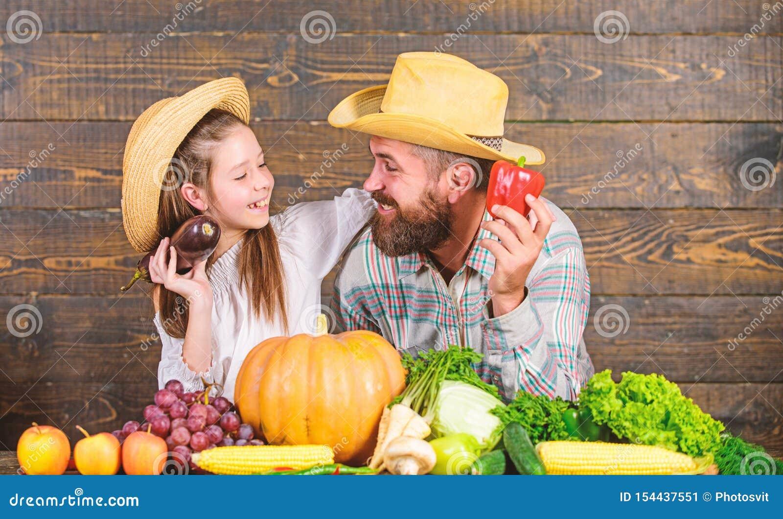 Садовник фермера отца семьи с дочерью около овощей сбора Образ жизни семьи сельской местности Рынок фермы с падением