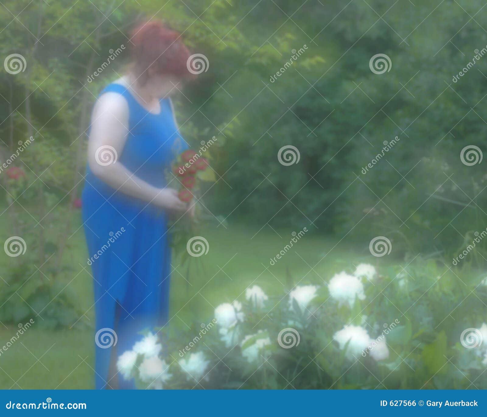 Download садовник фокуса мягкий стоковое фото. изображение насчитывающей пересоставлено - 627566