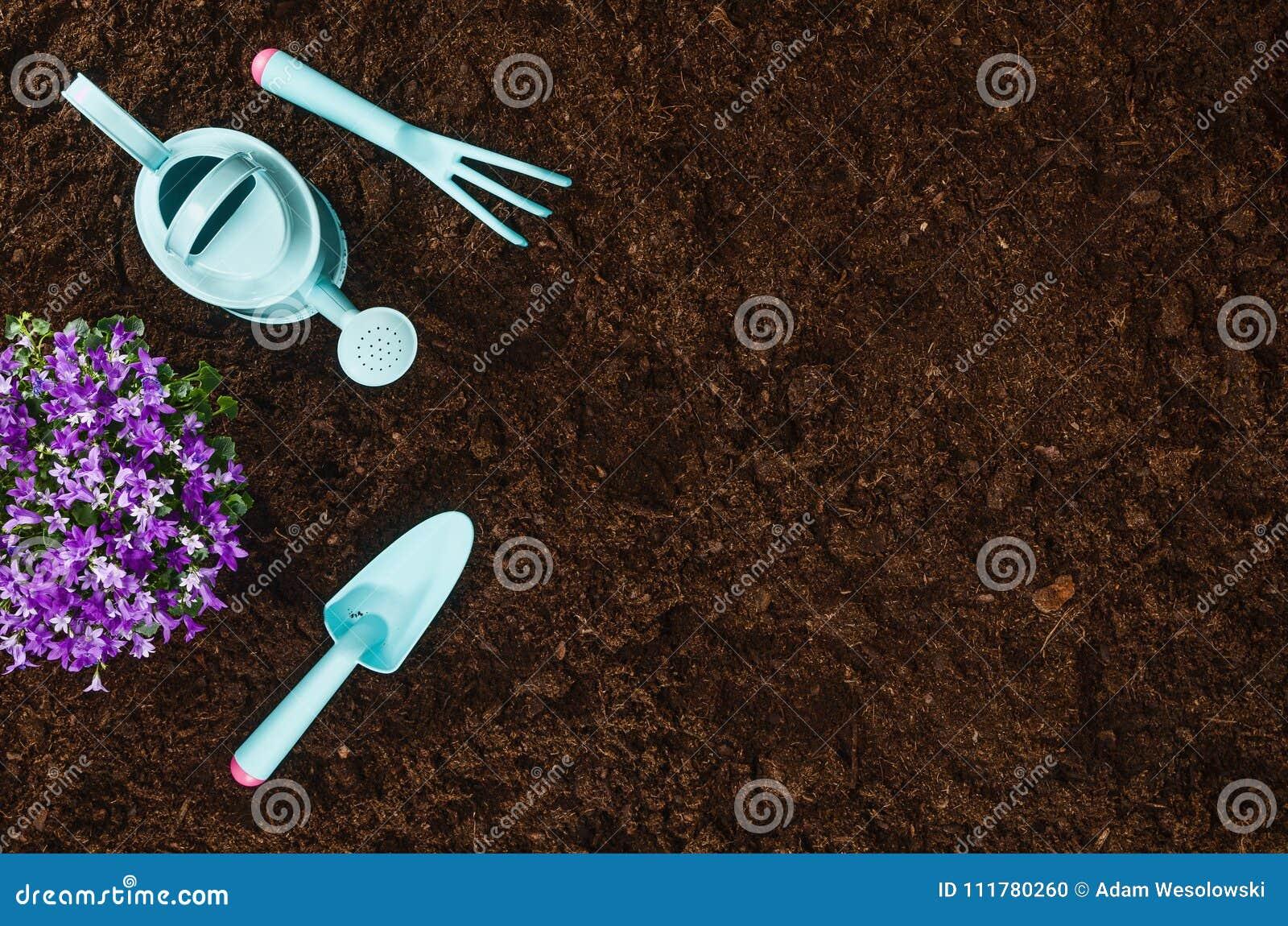 Садовничая инструменты на почве сада текстурируют взгляд сверху предпосылки