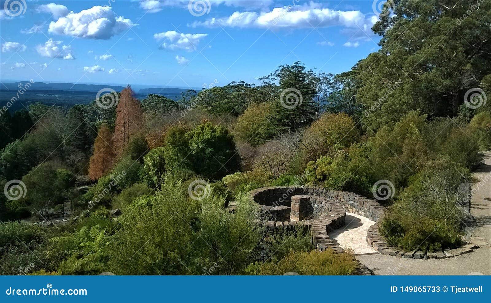 Сады голубых гор ботанические в NSW Австралии