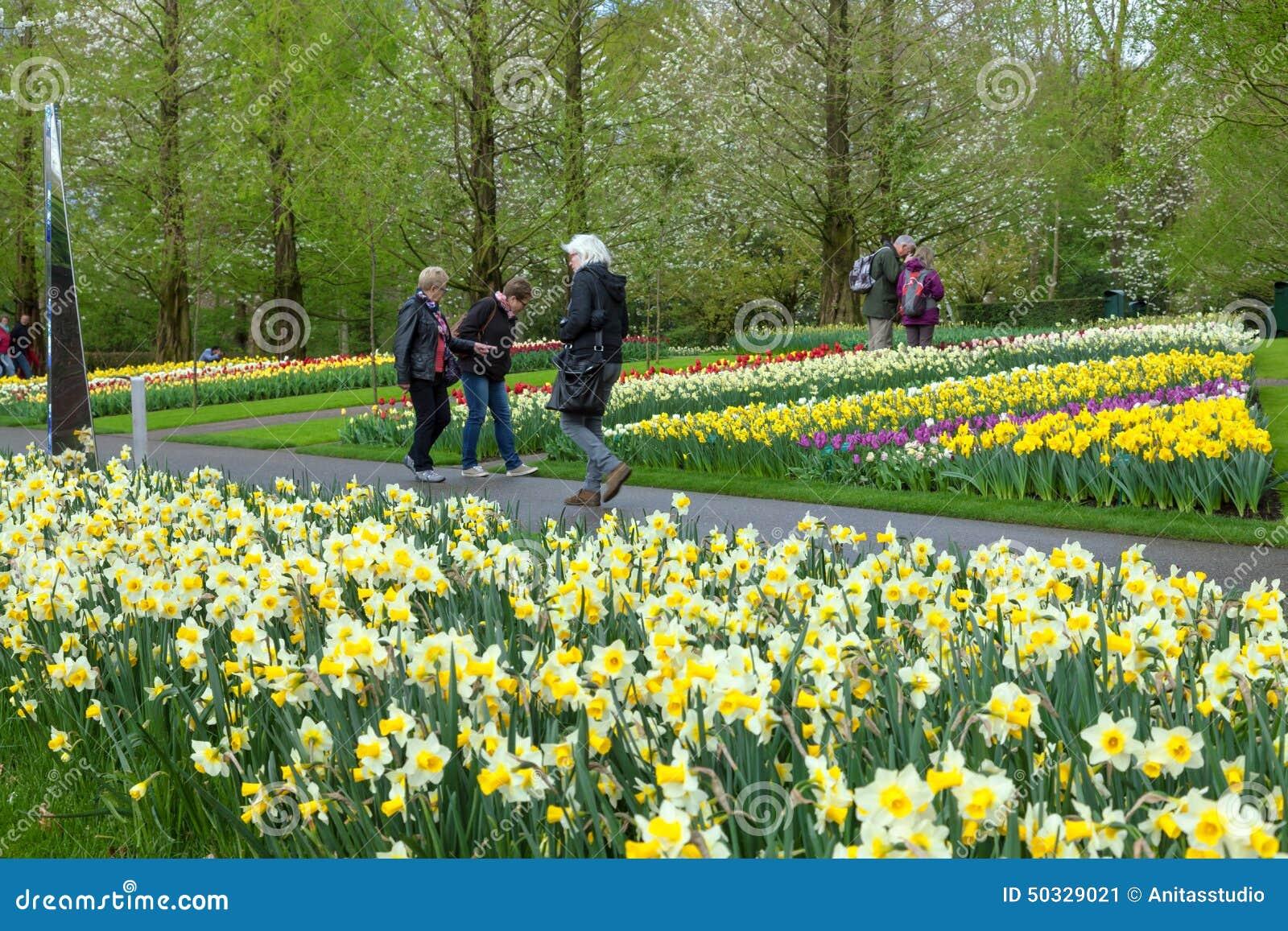 САД KEUKENHOF, НИДЕРЛАНДЫ - 8-ОЕ АПРЕЛЯ: Keukenhof цветочный сад мира самый большой с 7 миллионов шариками цветка на зоне