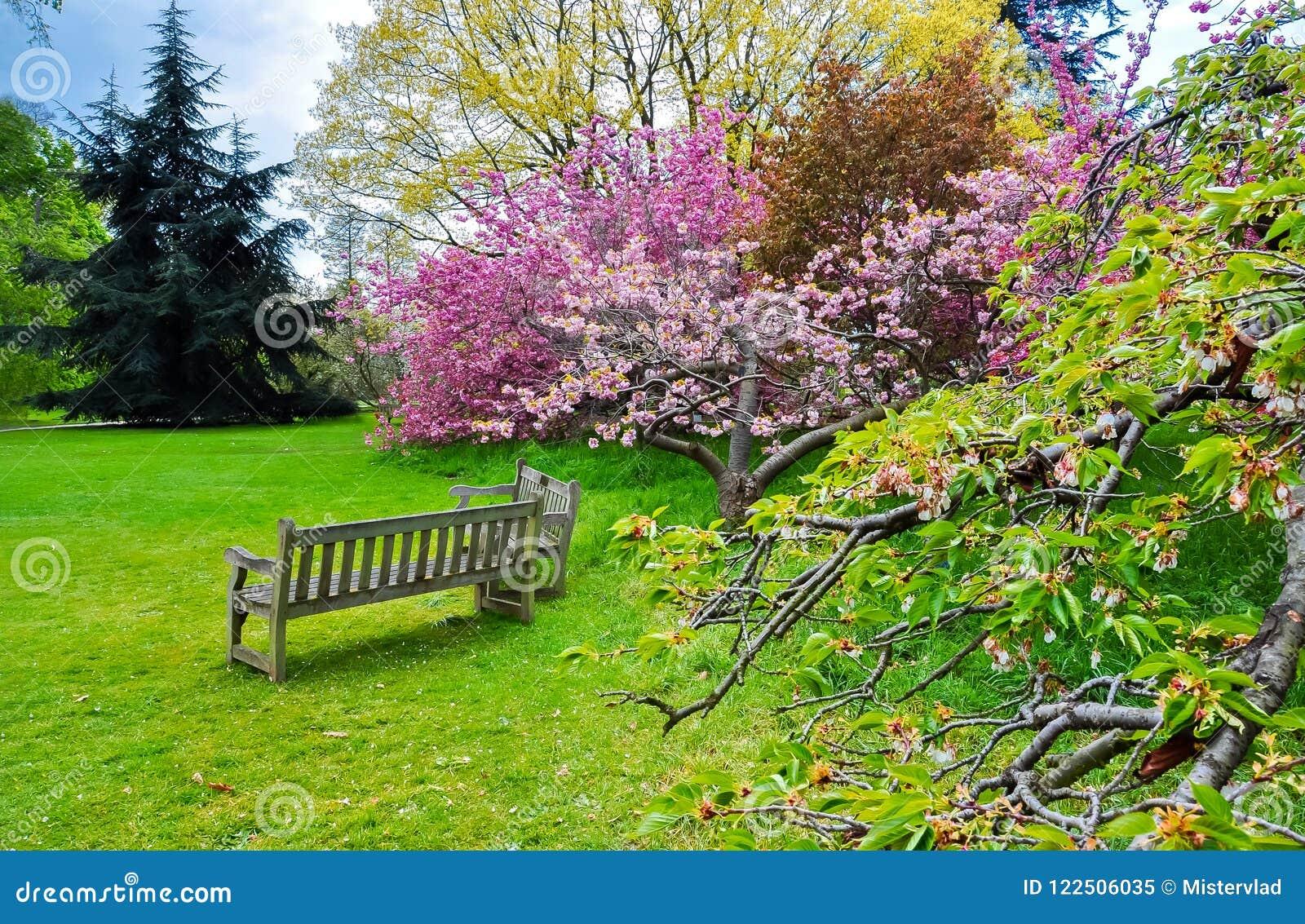 Сад Kew ботанический весной, Лондон, Великобритания