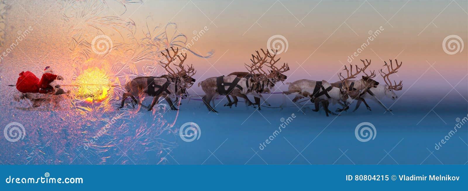Download Санта Клаус сидит в санях оленей Стоковое Изображение - изображение насчитывающей олени, тележка: 80804215