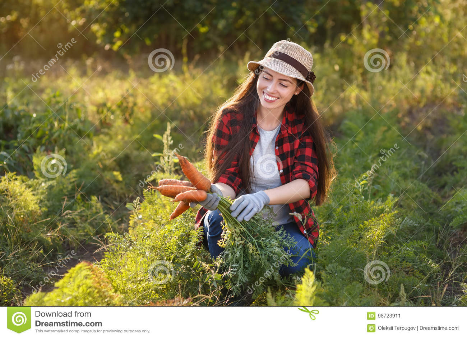 Садовник с морковами в огороде