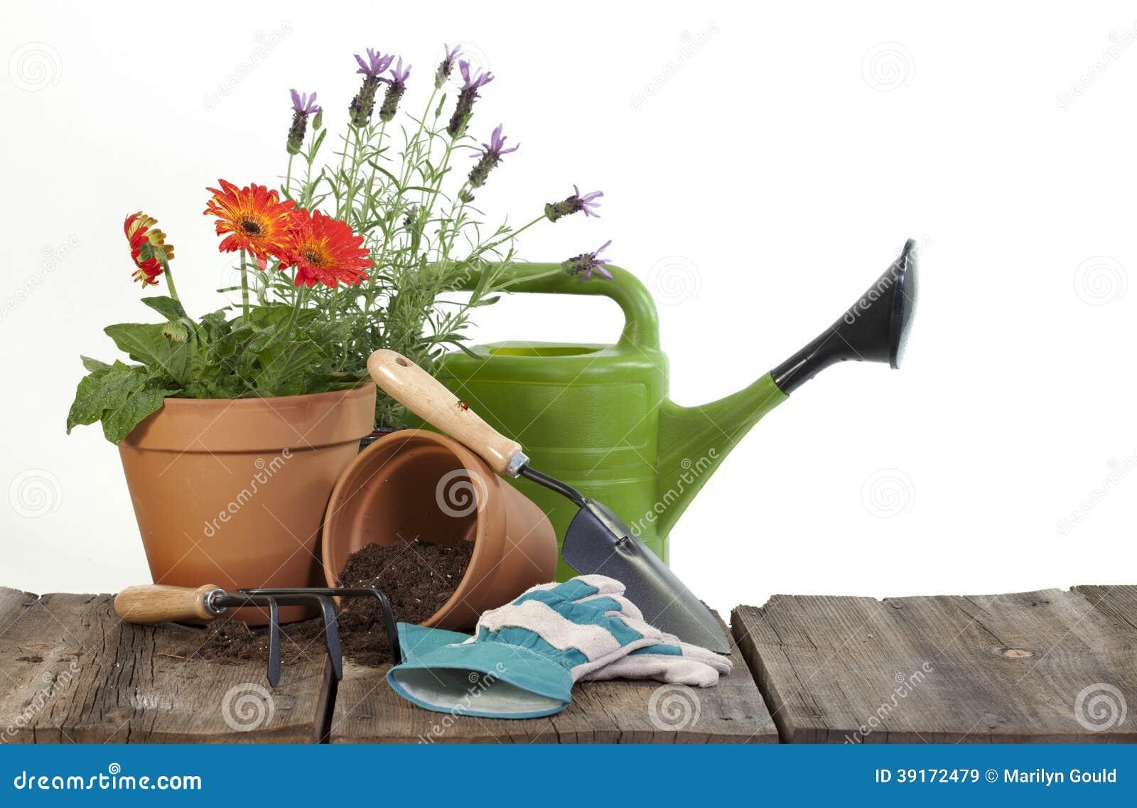 Садовничая инструменты и цветки