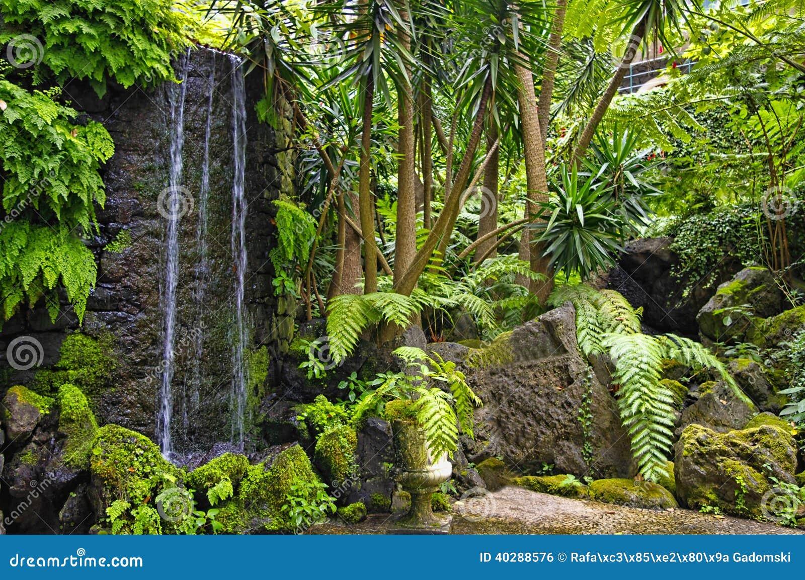 Сад Monte, Фуншал, остров Мадейры, Португалия