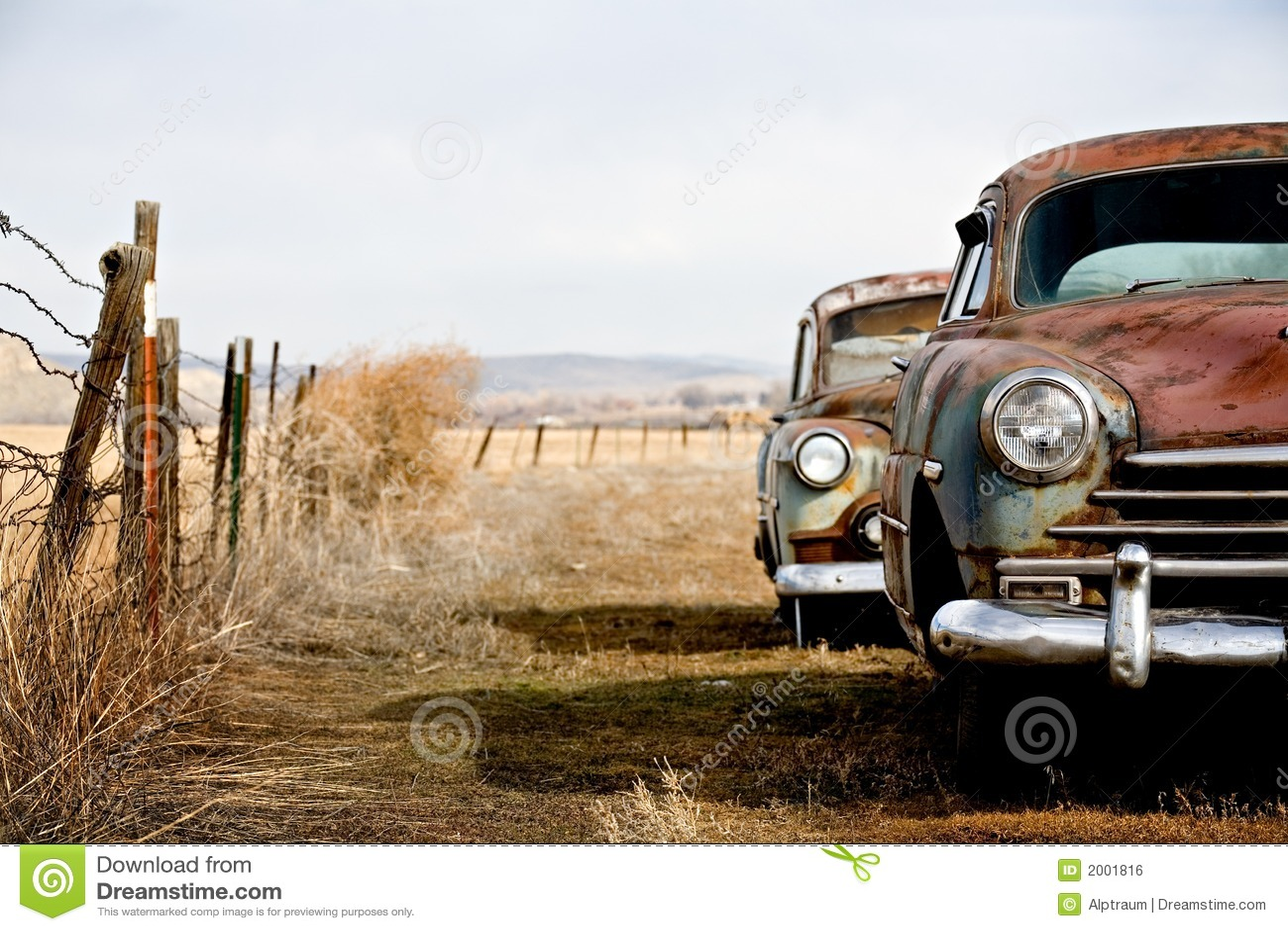 сбор винограда автомобилей