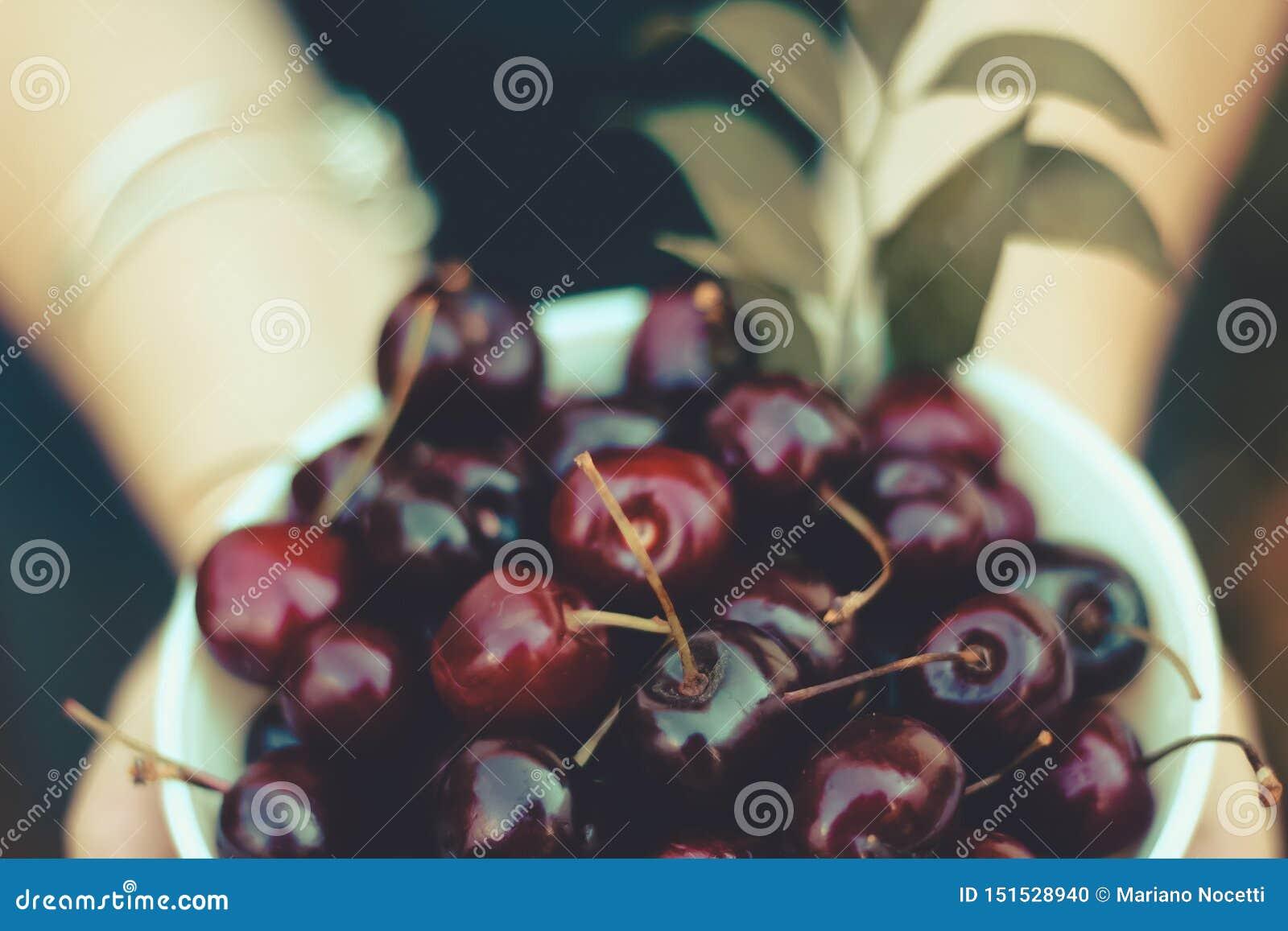 Свежие вишни в шаре