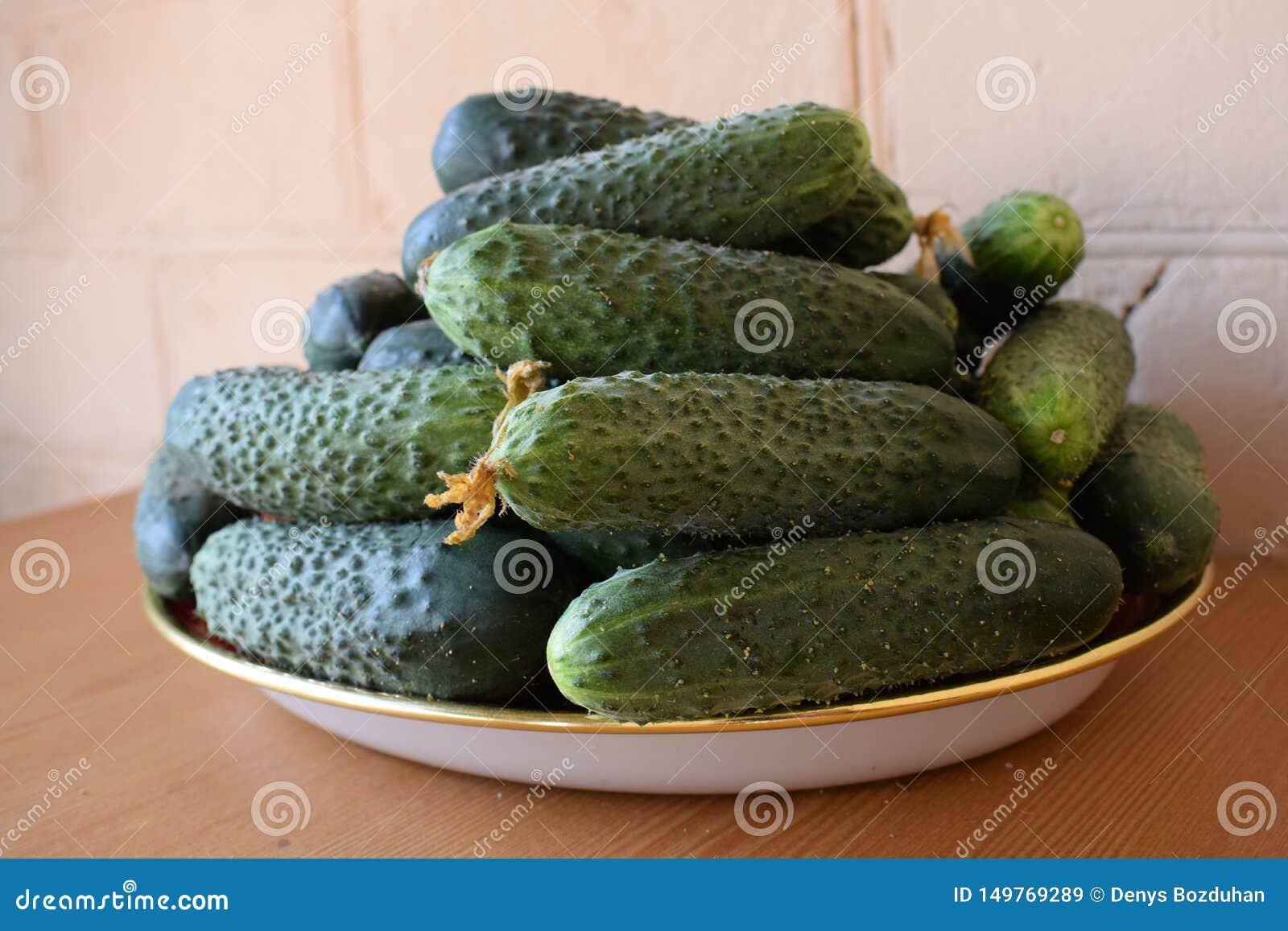 Свежие зеленые огурцы на плите r Огурец содержит витамины b, a