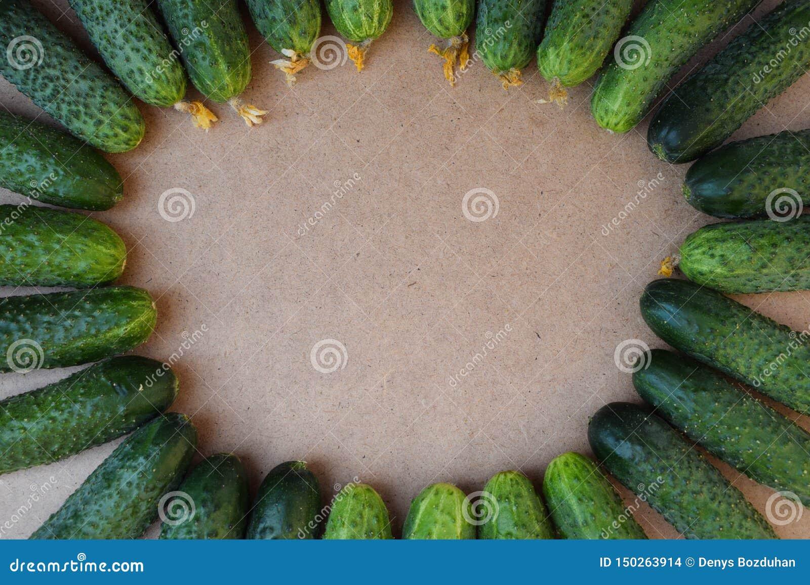 Свежие зеленые огурцы r Огурец содержит витамины b, a