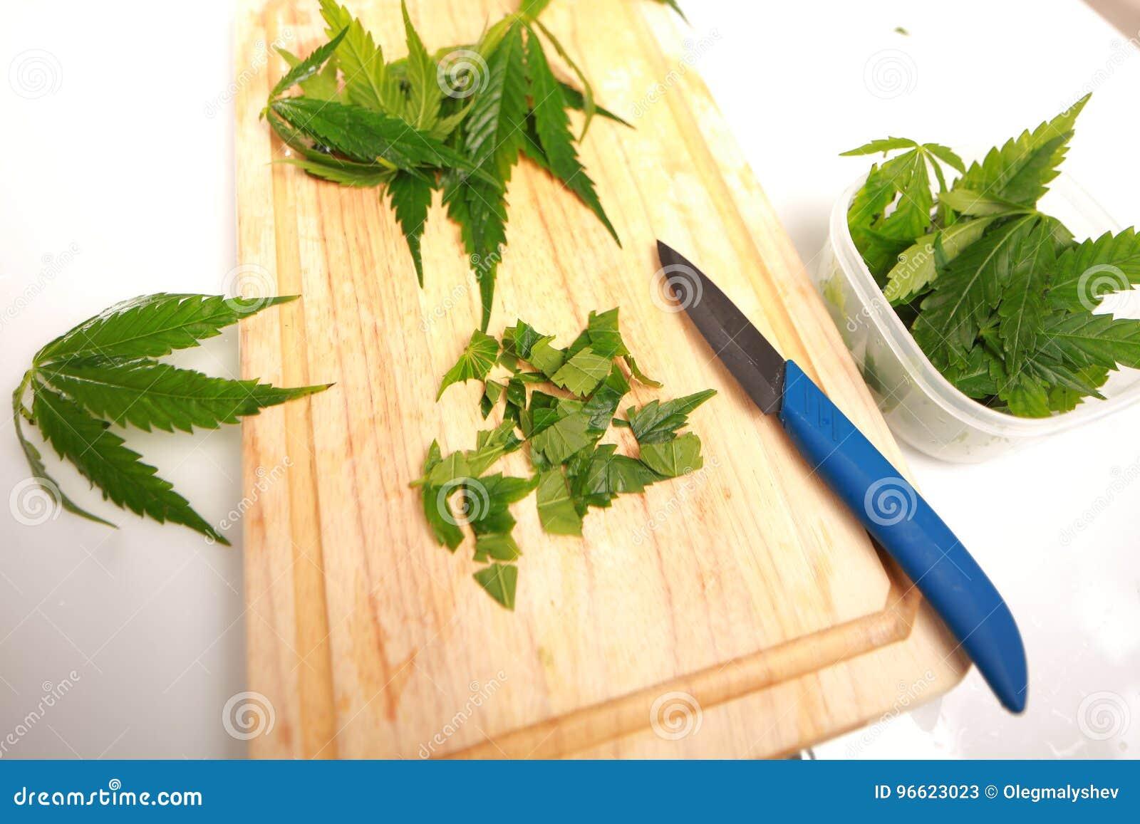 Салат с листьями конопли волокна конопли 6 букв