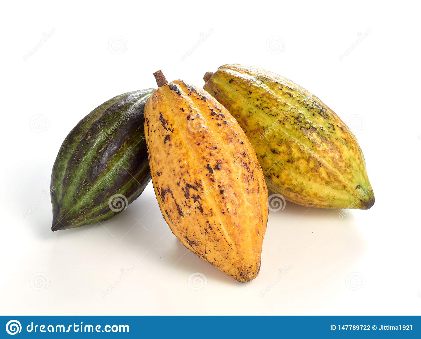 Свежие плоды какао