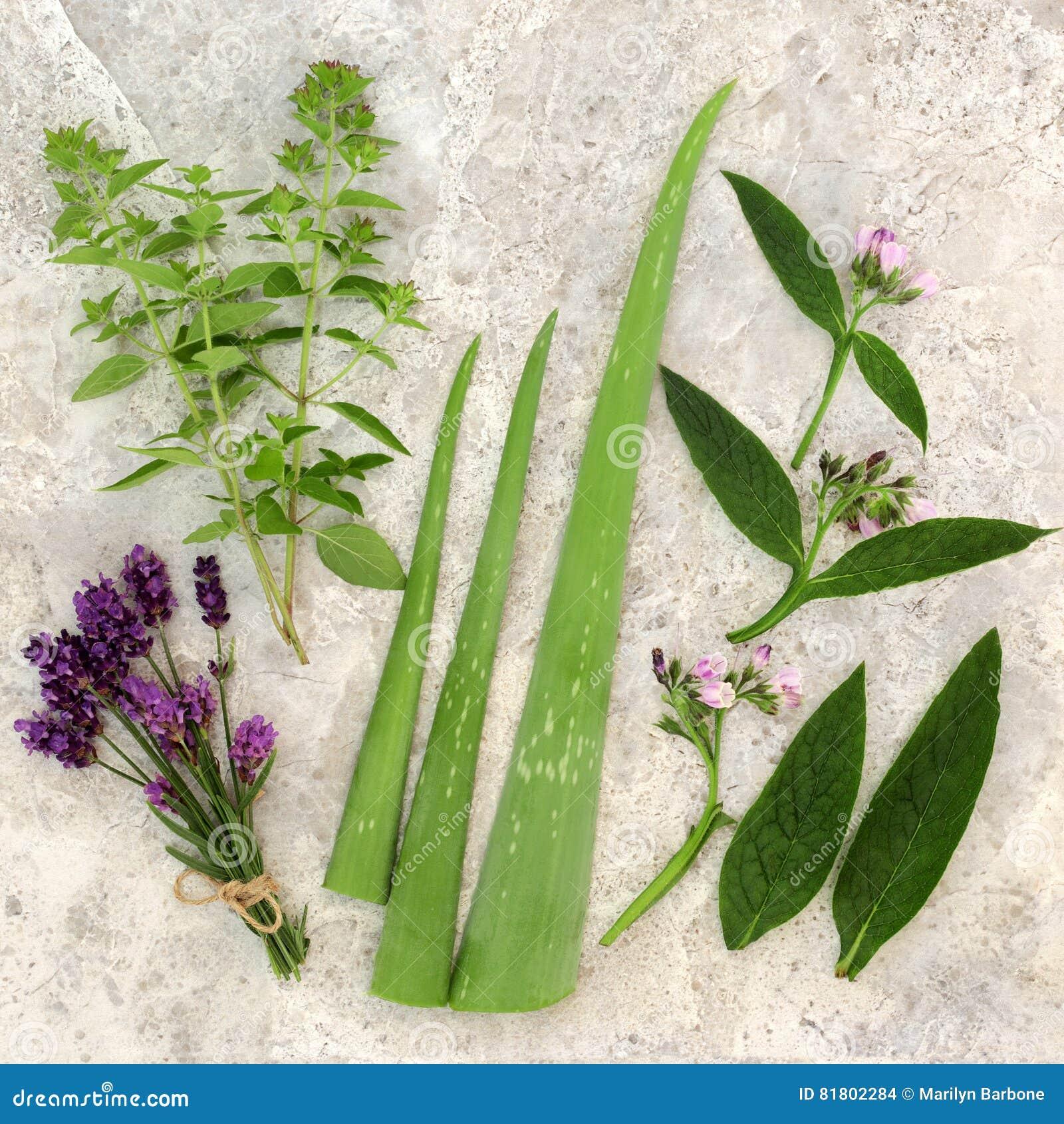 Свежие травы для заботы кожи