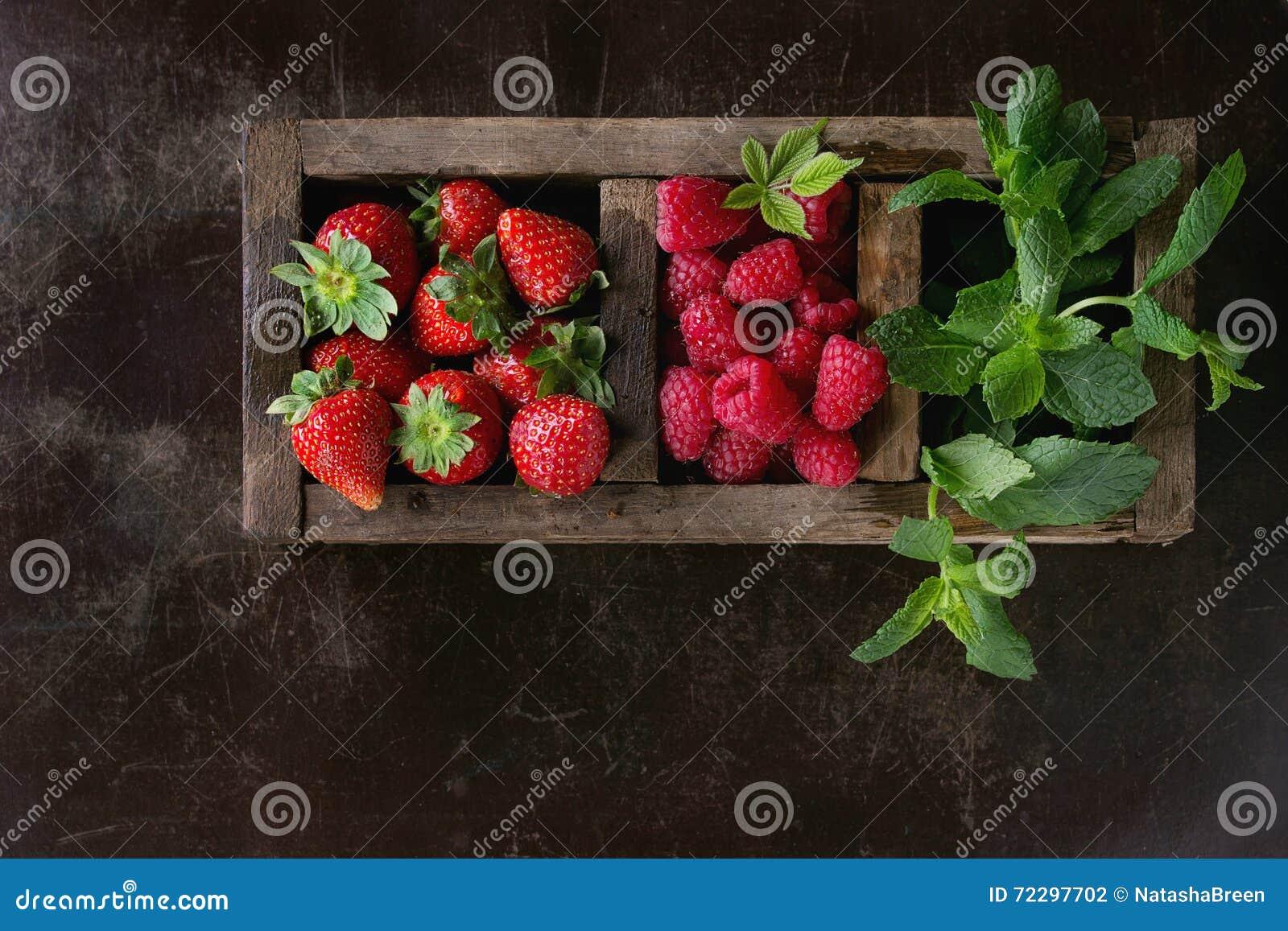 Download Свежие ягоды и мята стоковое фото. изображение насчитывающей еда - 72297702
