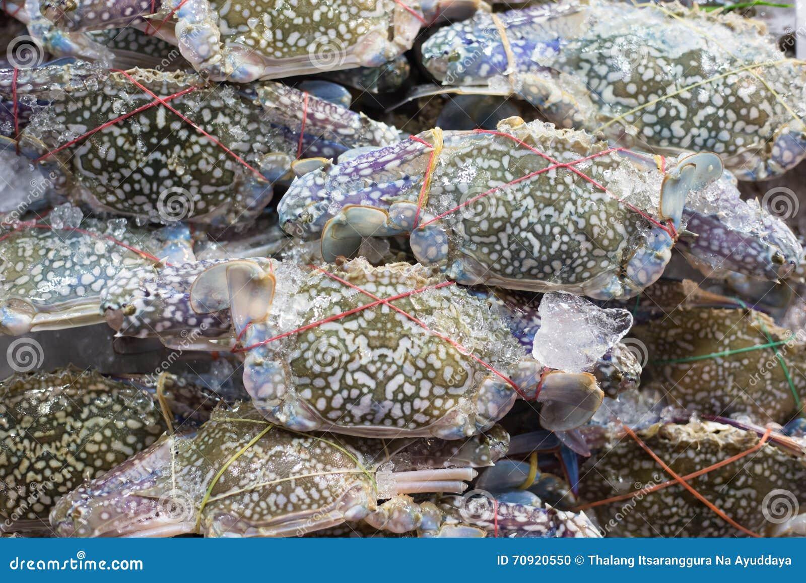 Свежий голубой рак на рынке морепродуктов