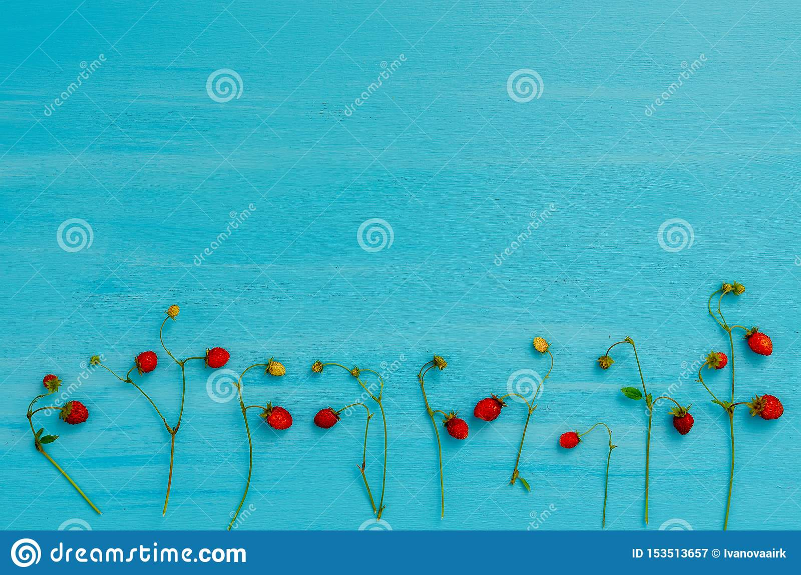 Свежий завод с ягодами диких клубник, клубника леса дикая, взгляд сверху
