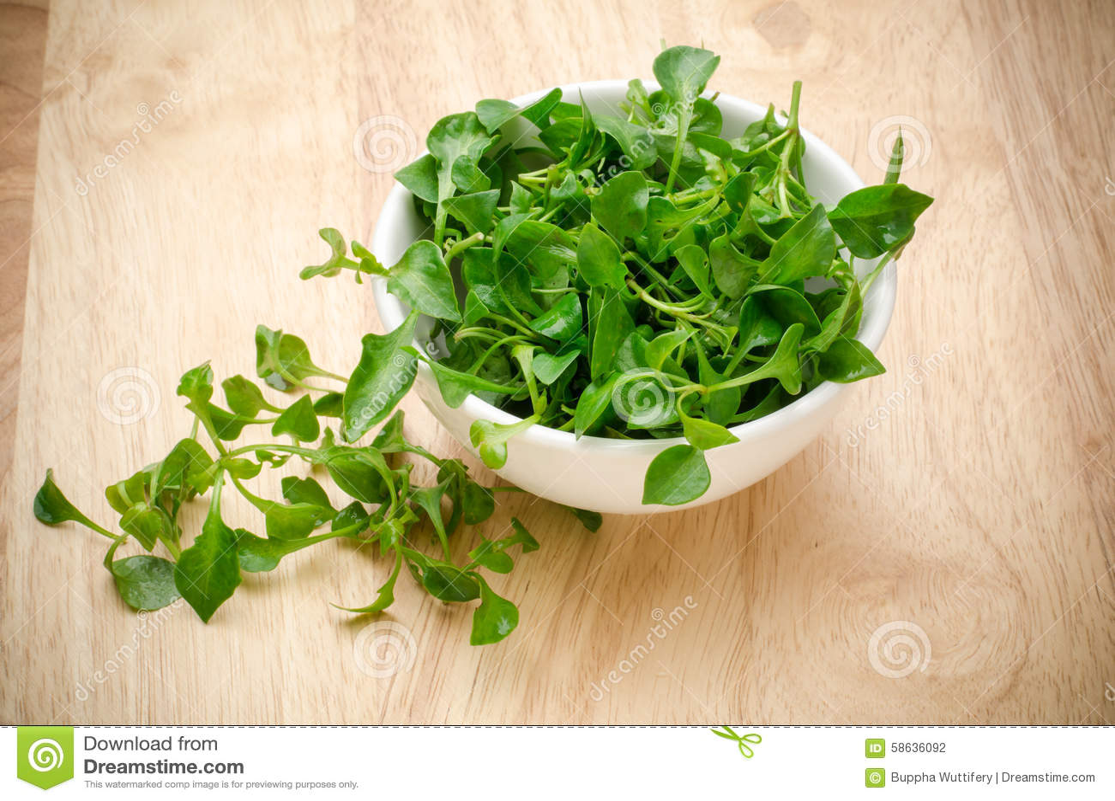 свежий кресс-салат