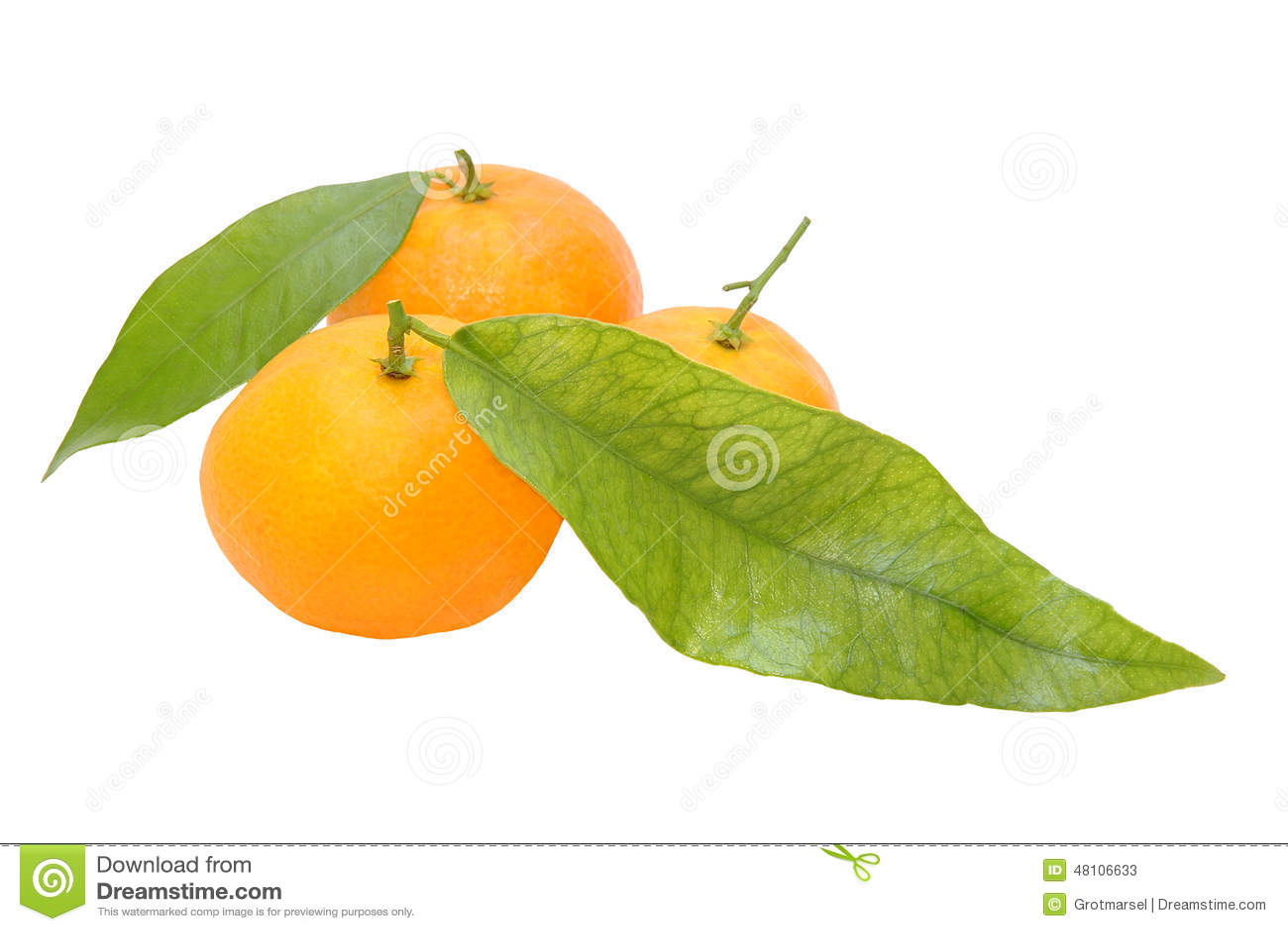 3 свежих tangerines при зеленые leafes изолированные на белом backg
