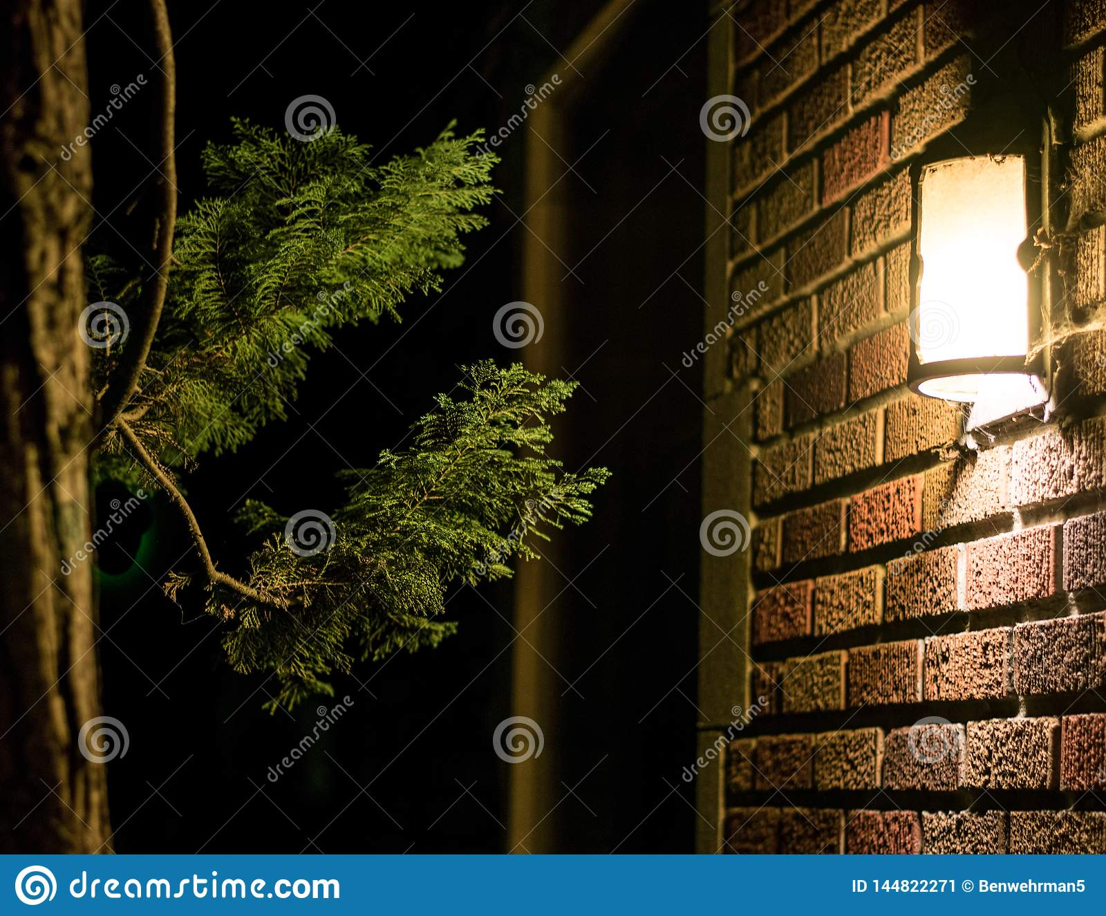 Свет и дерево на кирпичной стене
