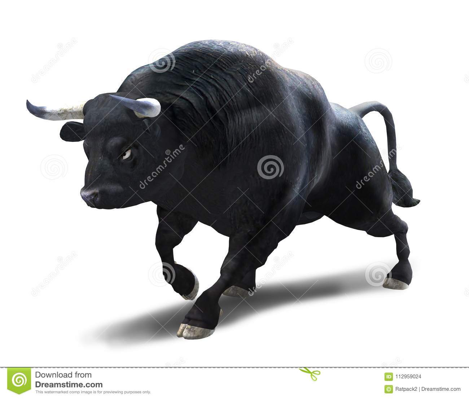 Свирепствовать Bull атакуя на белизну