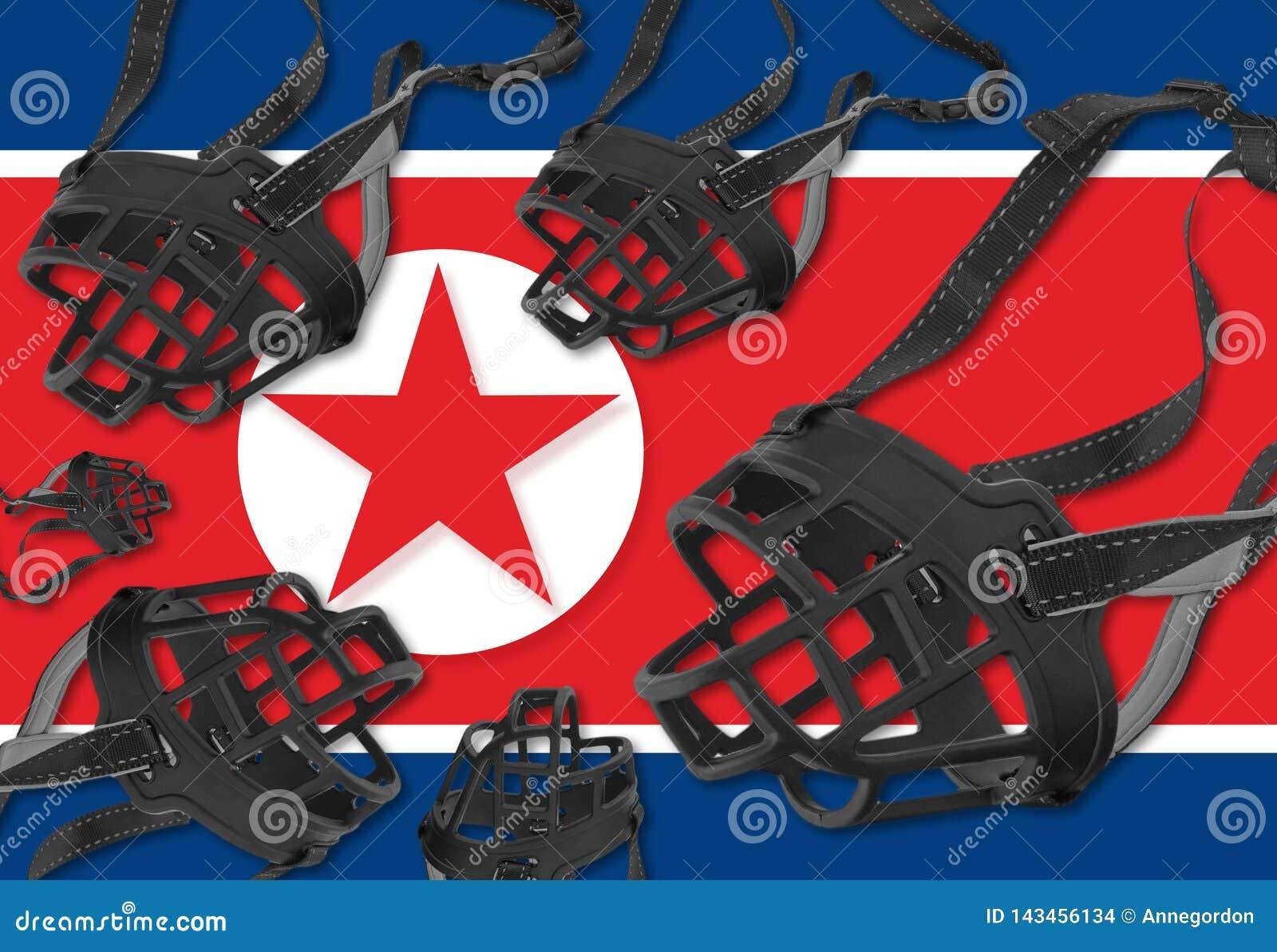 Свобода выражения и права человека в Корейской Северной Корее
