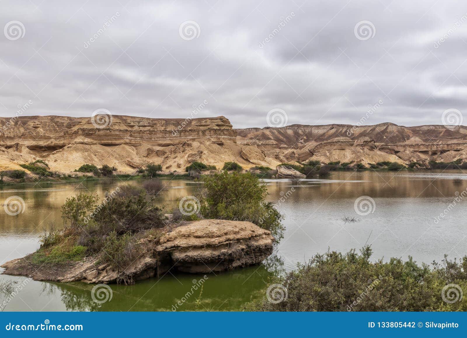 Свод Namibe оазис в пустыне которая обычно заполняет каждые 6 лет в зависимости от дождя anisette вышесказанного Namibe
