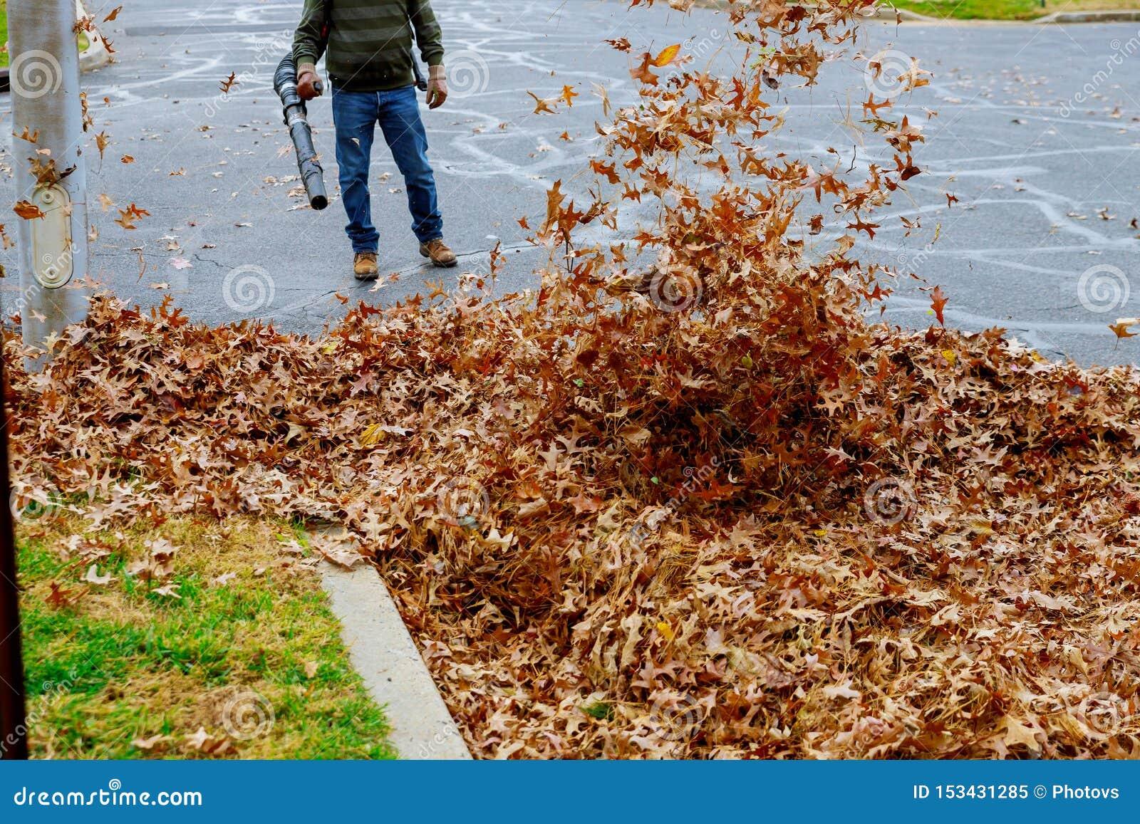 Сгребать падение выходит с листьями осени грабл на мостовую и веник