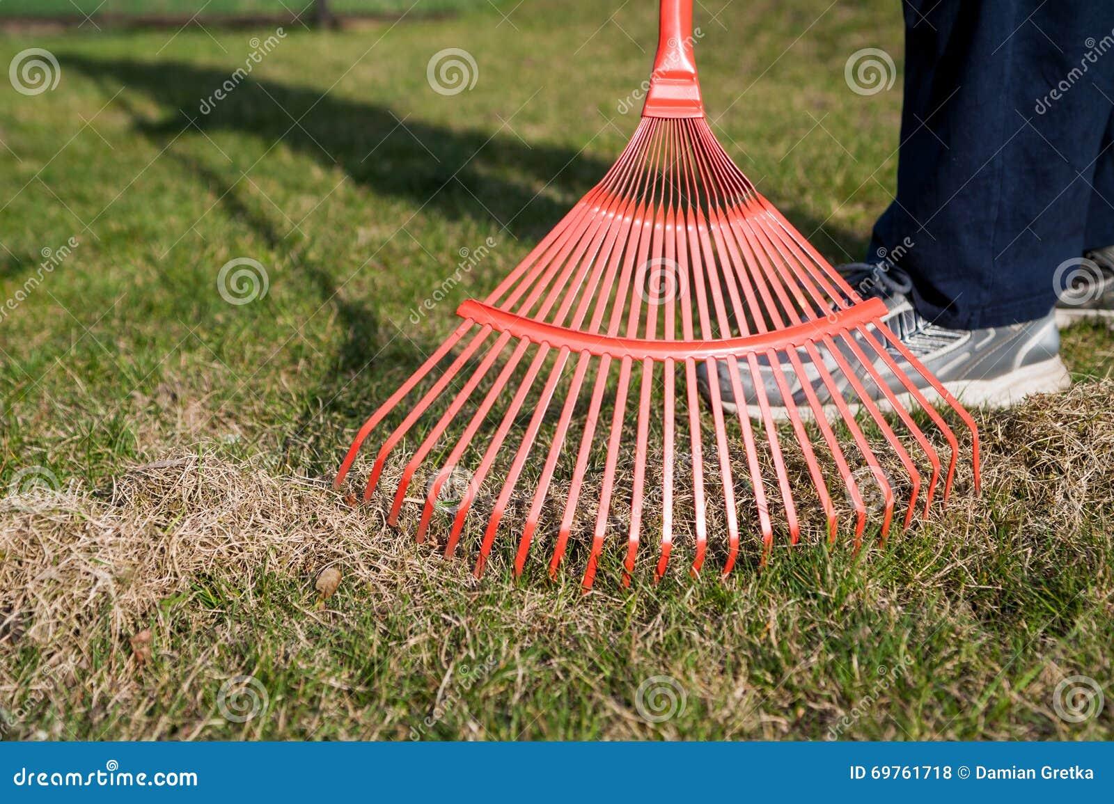 сгребать травы