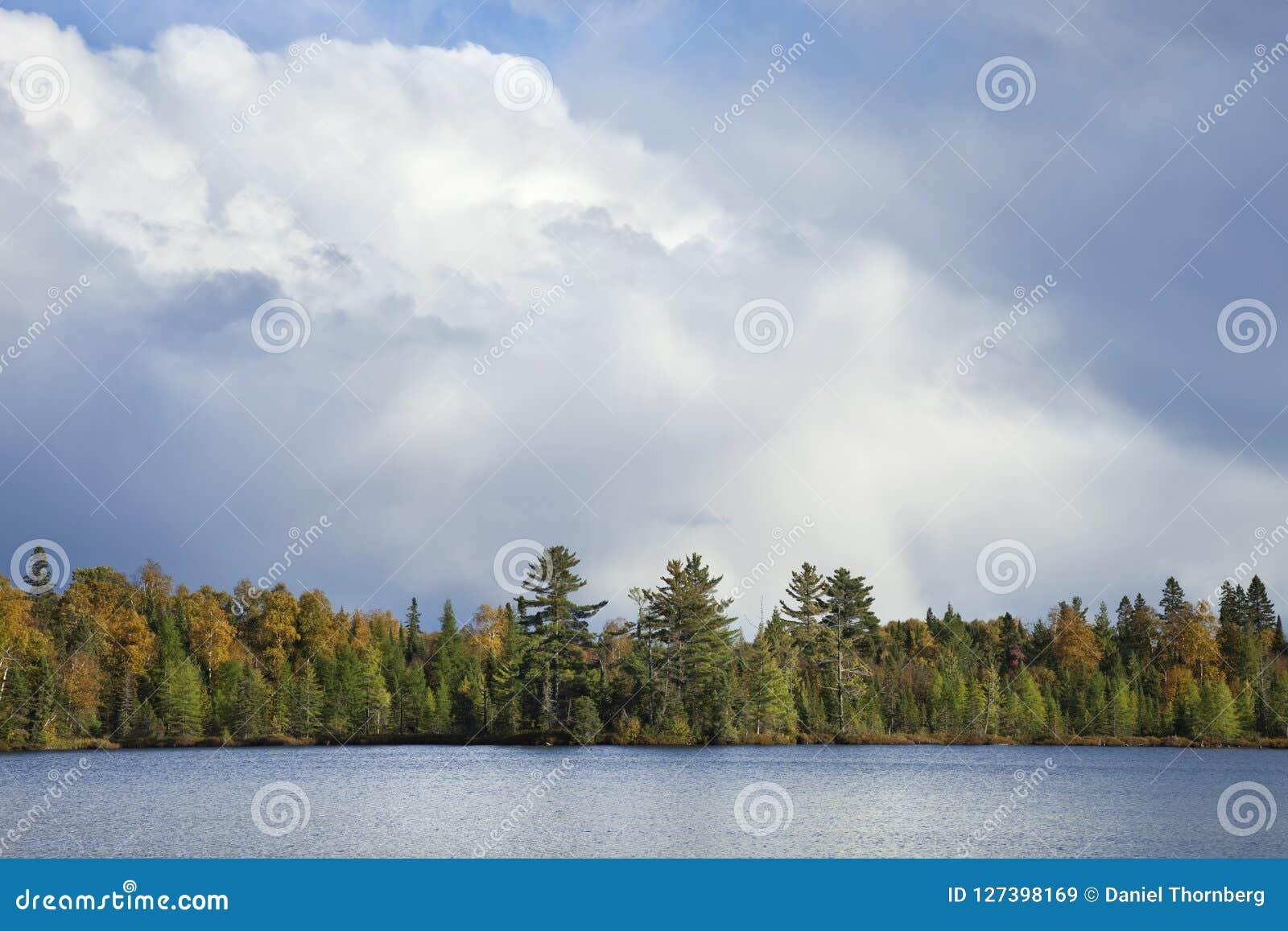 Северная Минесота lakeshore в цвете осени под драматическим clou