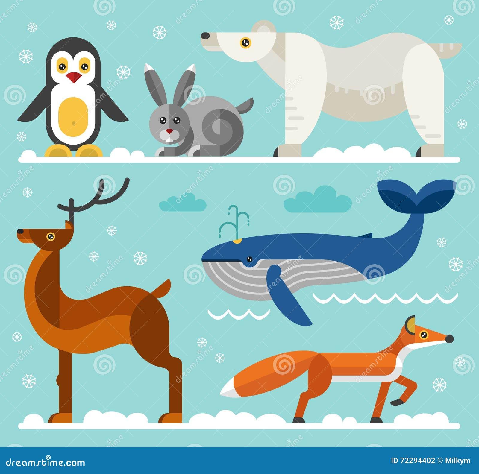 Download Северные и ледовитые установленные значки животных Иллюстрация вектора - иллюстрации насчитывающей море, олени: 72294402