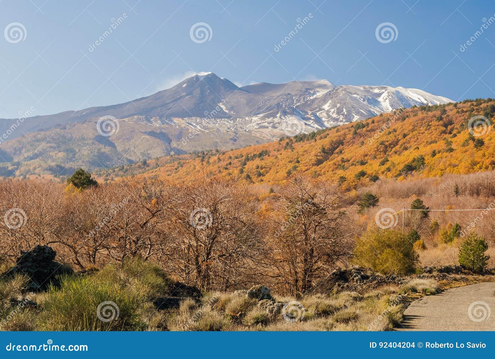 Северовосточный фланк вулкана Этна во время последней осени