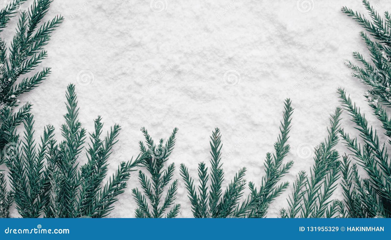 Сезон зимы, идеи концепций рождества с сосной и снег