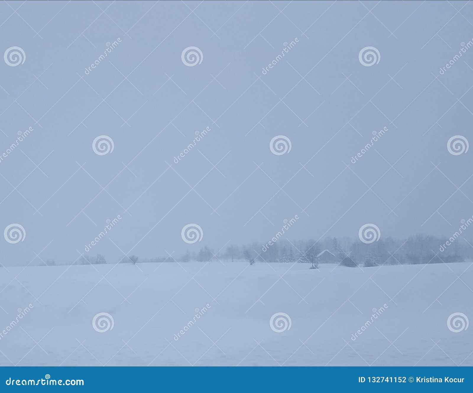 сельская местность покрыла снежок