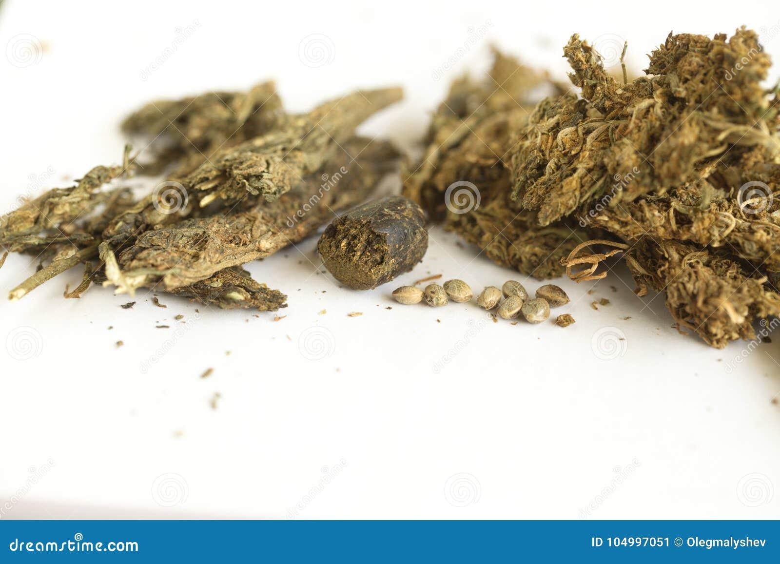 Семена индийский конопли семена конопляные почтой наложенным платежом шишкин
