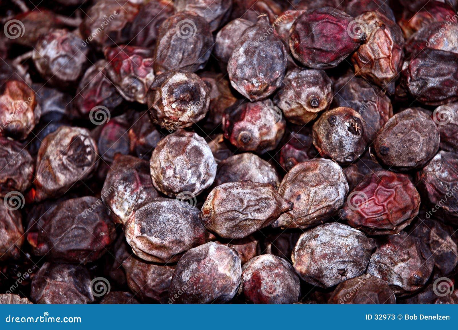 семена ладони лисохвоста засыхания