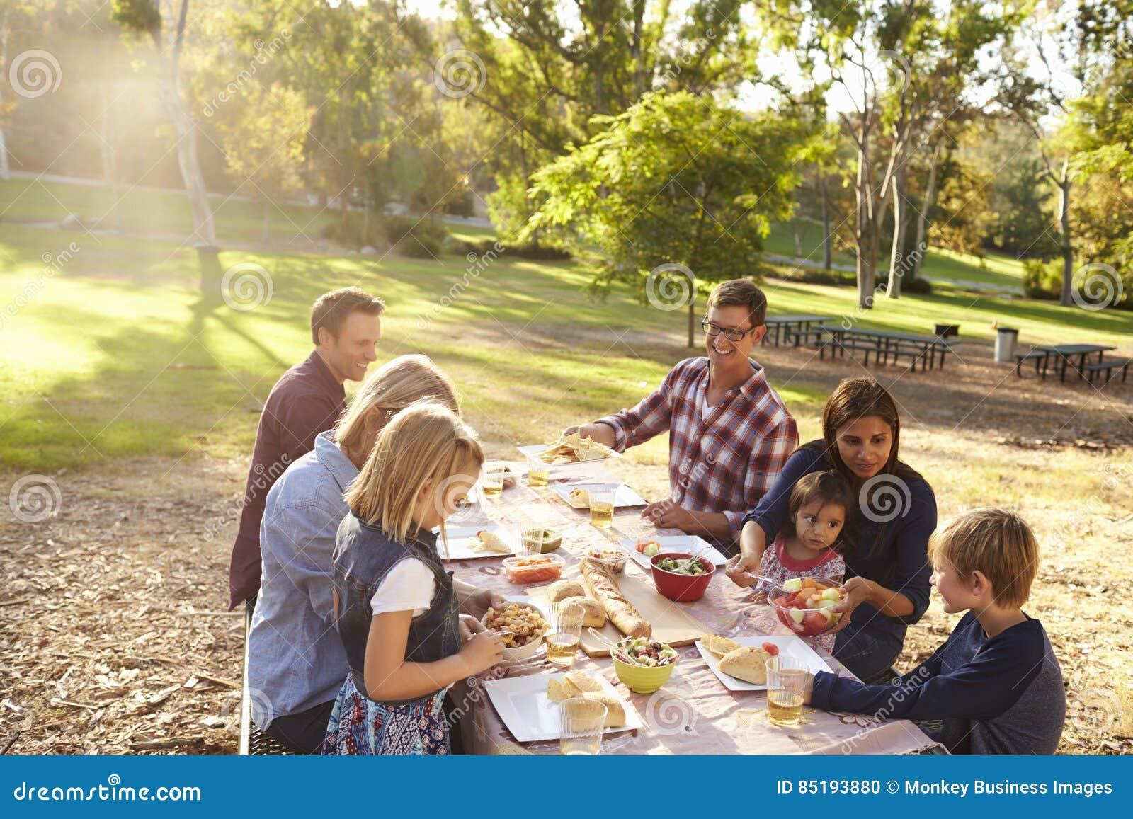 2 семьи имея пикник совместно на таблице в парке