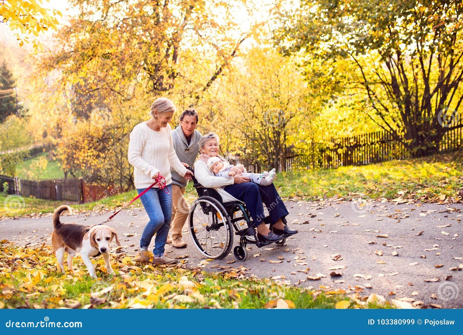 Семья из нескольких поколений с собакой на прогулке в природе осени