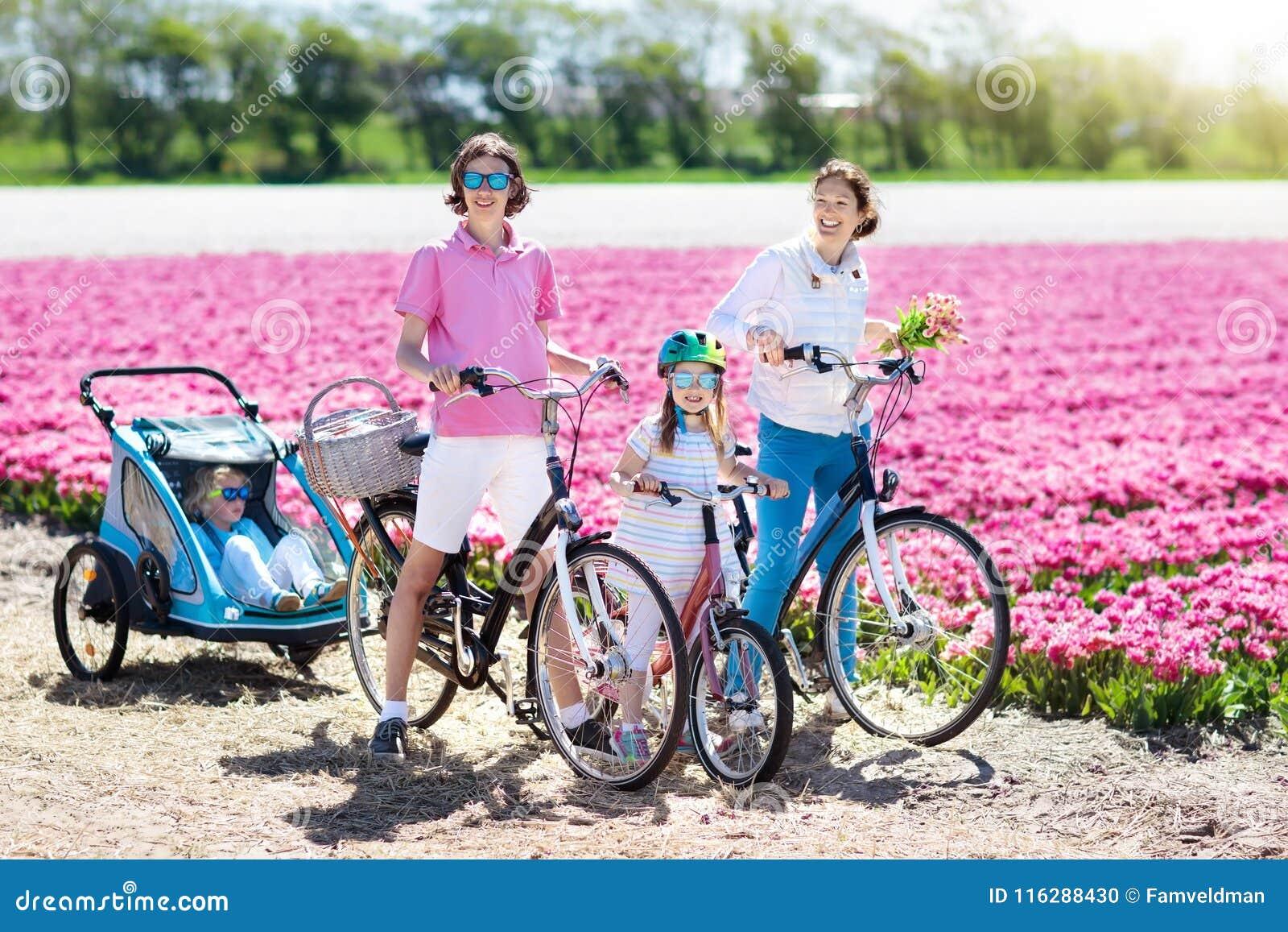 Семья на велосипеде в полях цветка тюльпана, Голландии