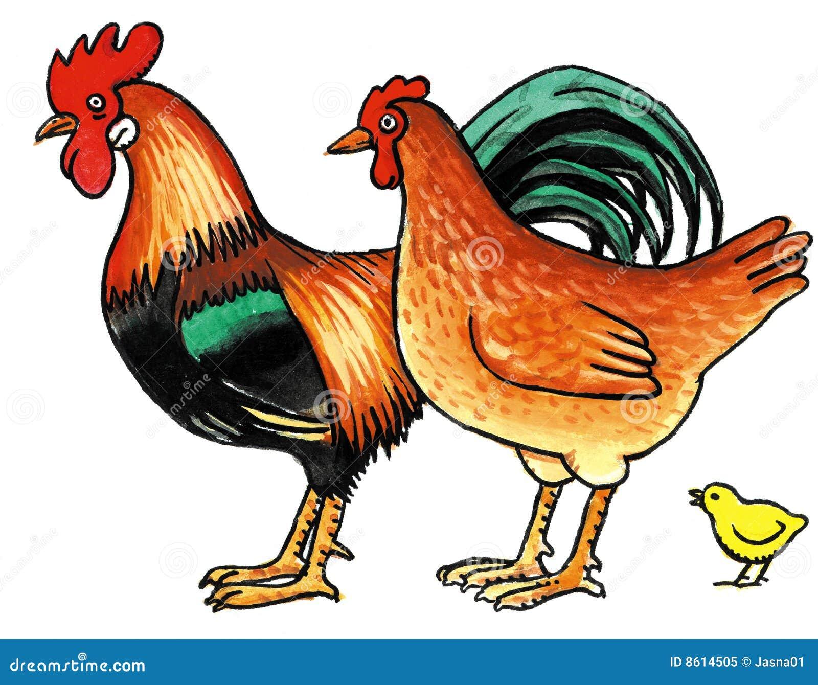 Картинки курица с цыплятами и петухом для детей, марта