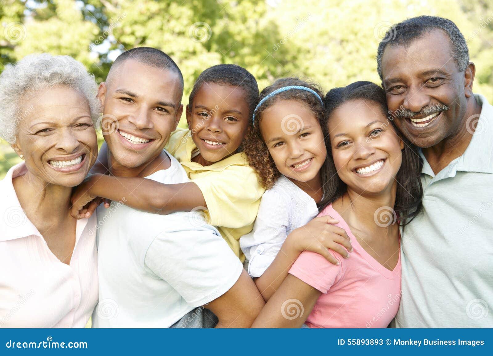 Семья Multi поколения Афро-американская ослабляя в парке