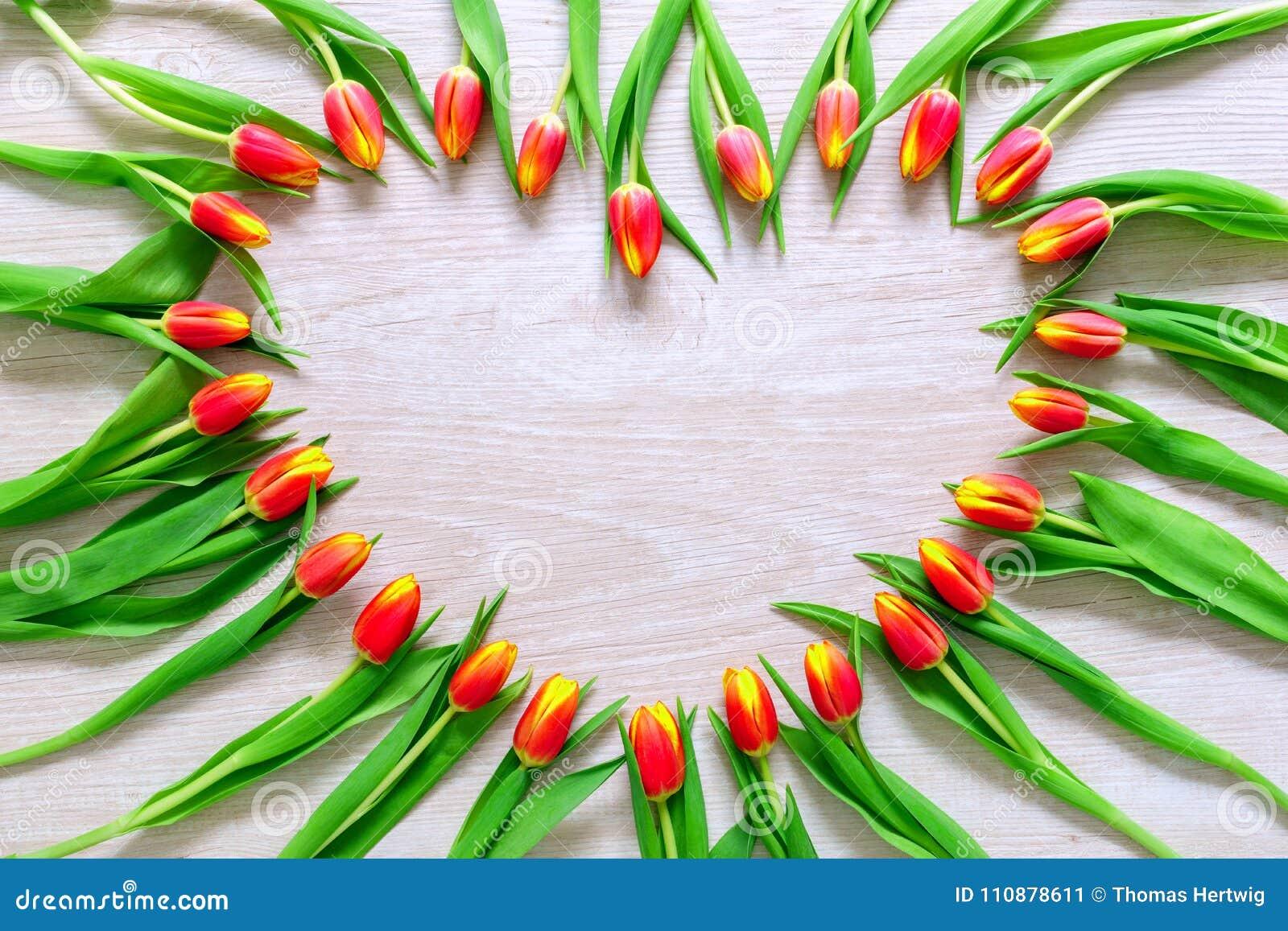 Сердце от красных тюльпанов цветет на деревенской таблице на день 8-ое марта, Международного женского дня, дня рождения, дня вале