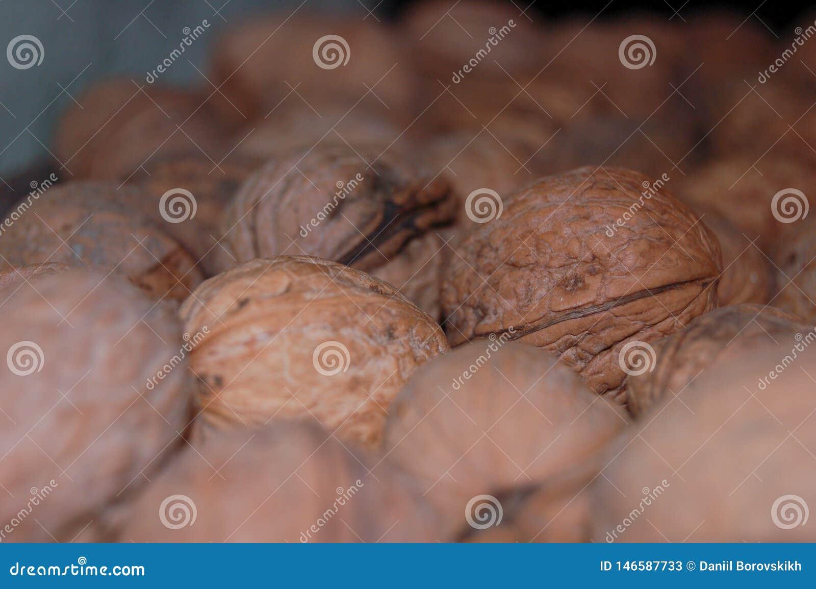 Серии грецких орехов на полке