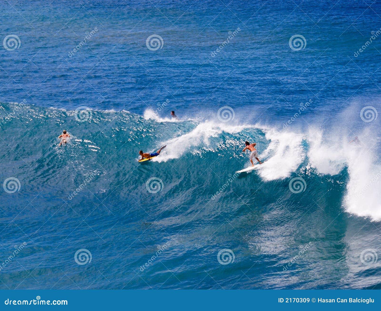 серферы Гавайских островов maui