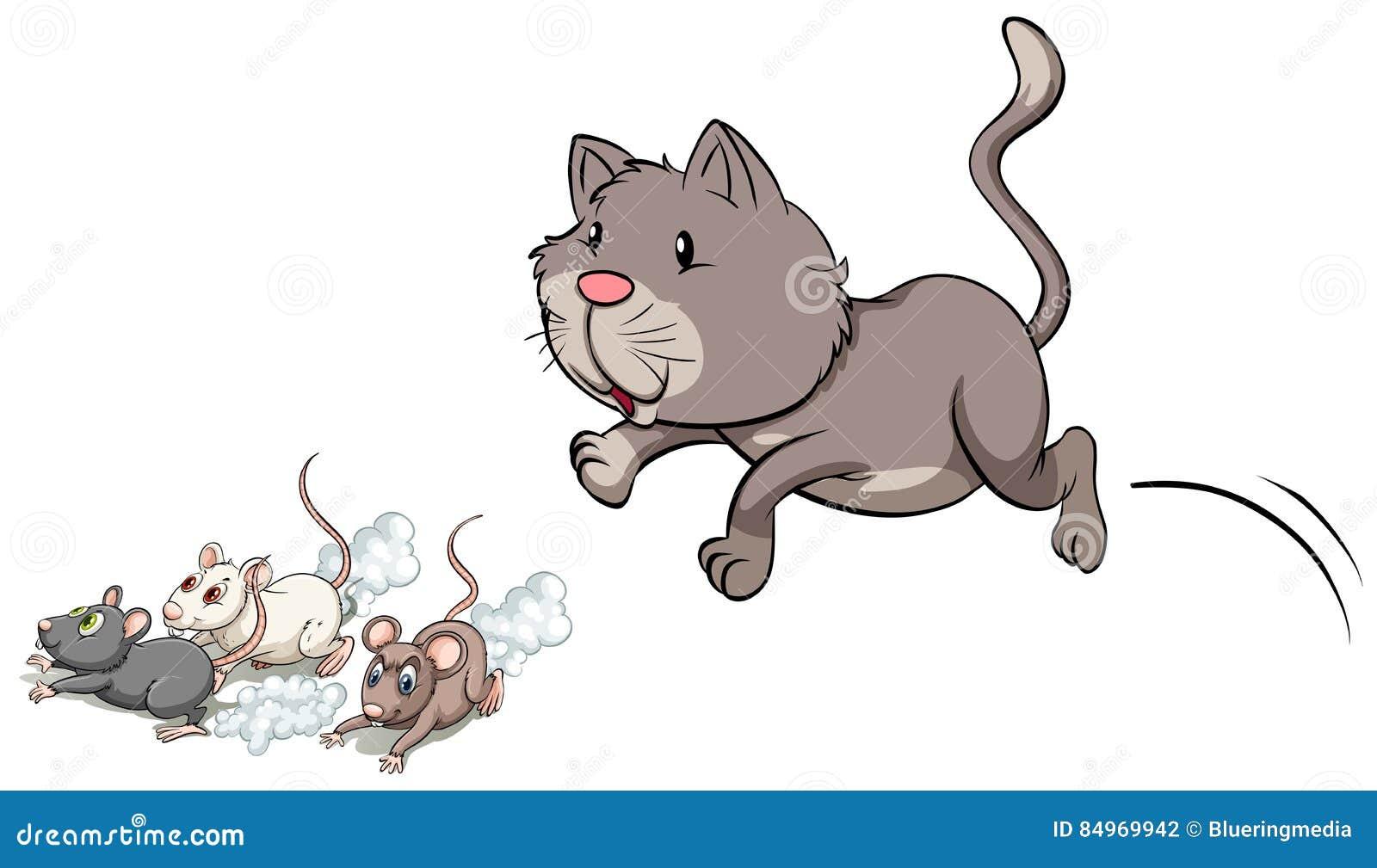 Картинка кошки и мышки для детей на прозрачном фоне