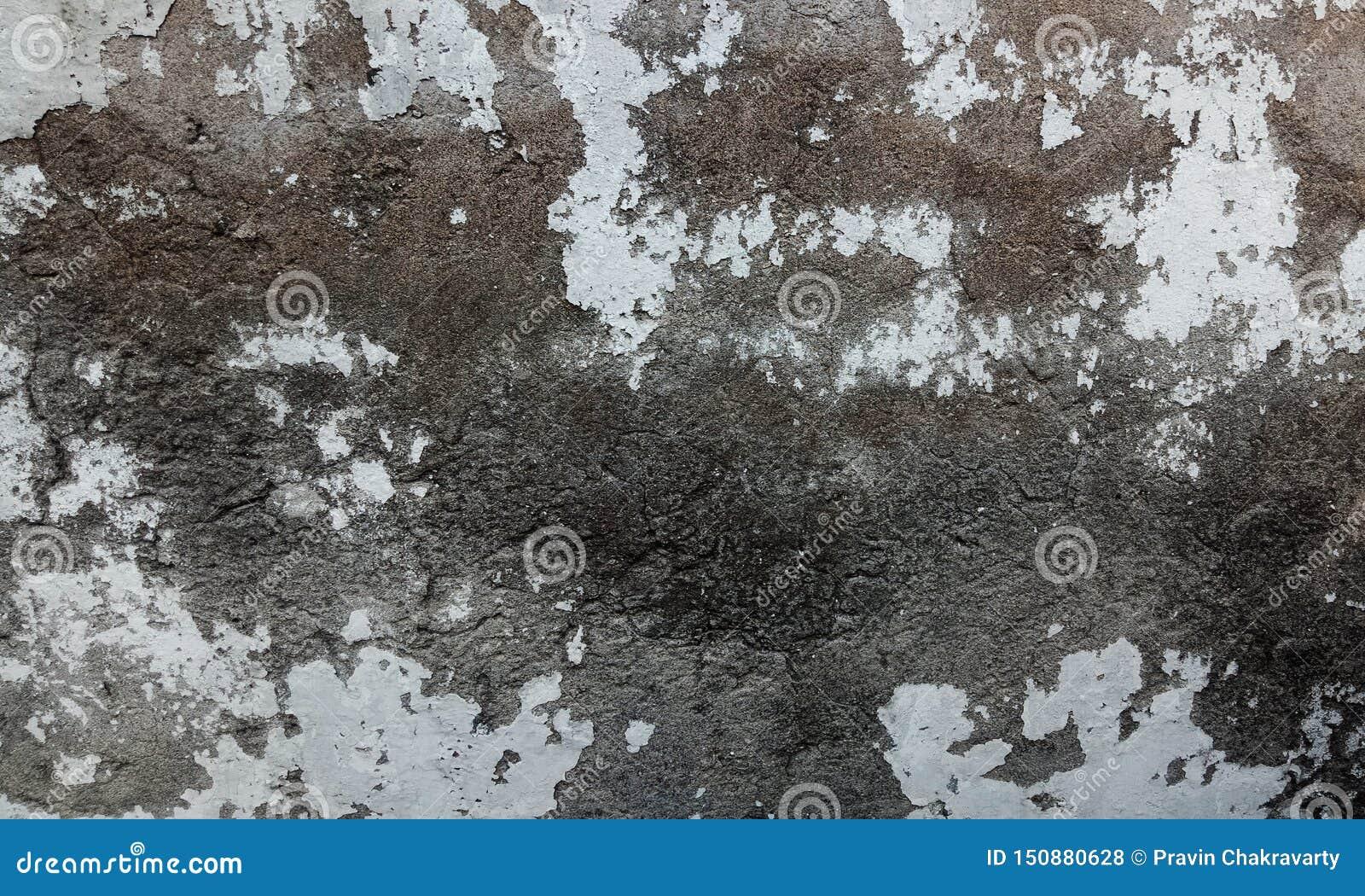 Серый цвет и коричневая затеняемая предпосылка grunge текстурированная стеной