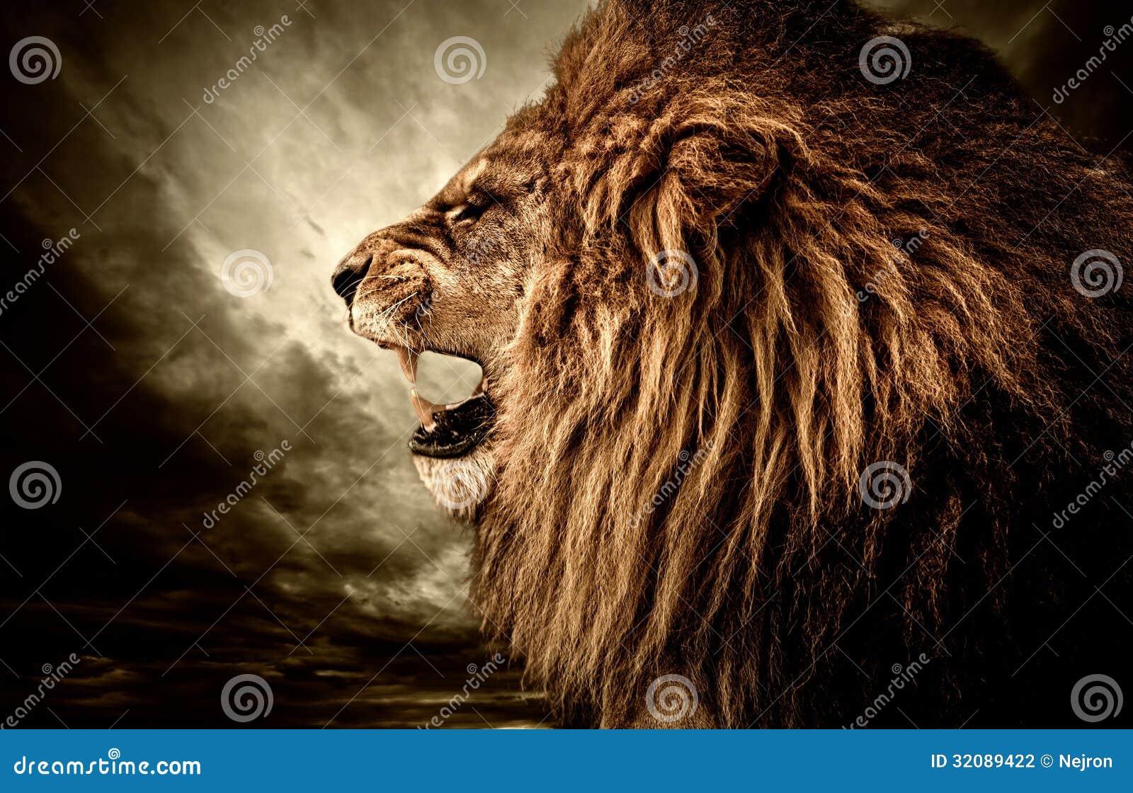 Сердитый лев