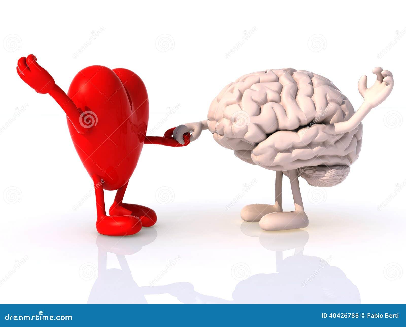 Мозг и сердце цитаты