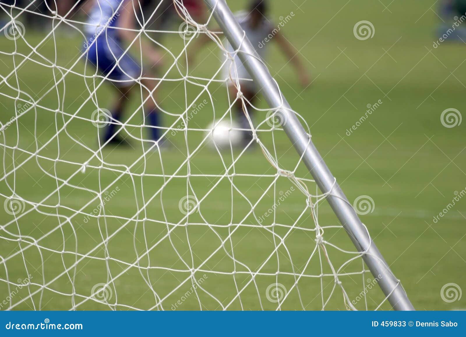 сетчатый футбол